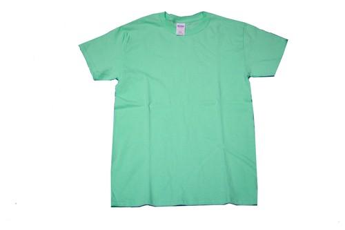 GILDAN S/S T-Shirt MINT