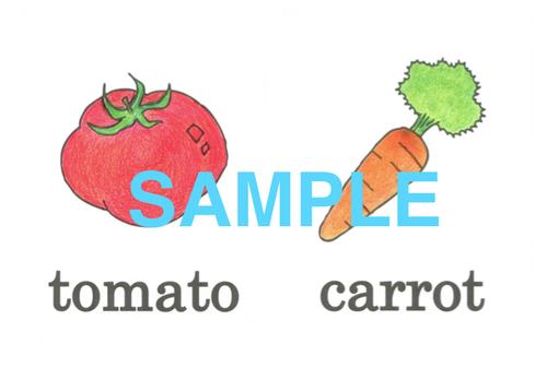 Vegetables 絵+英単語 フラッシュカードデータ(カラー)