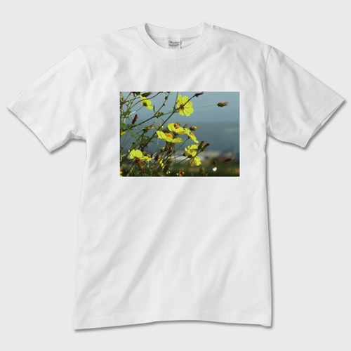 美瑛の花畑(Tシャツ 白)