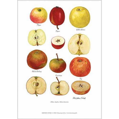 アート ポスター A4 サイズ KOUSTRUP & CO. - Apples りんご