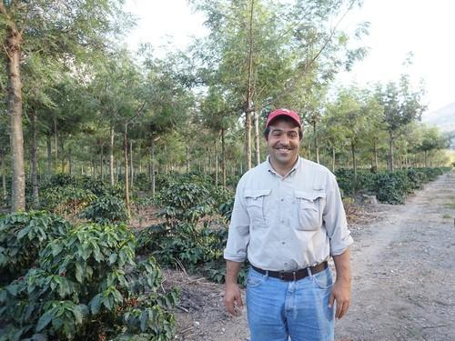 グアテマラ サン・フアン農園 テキシク 中深煎り200g