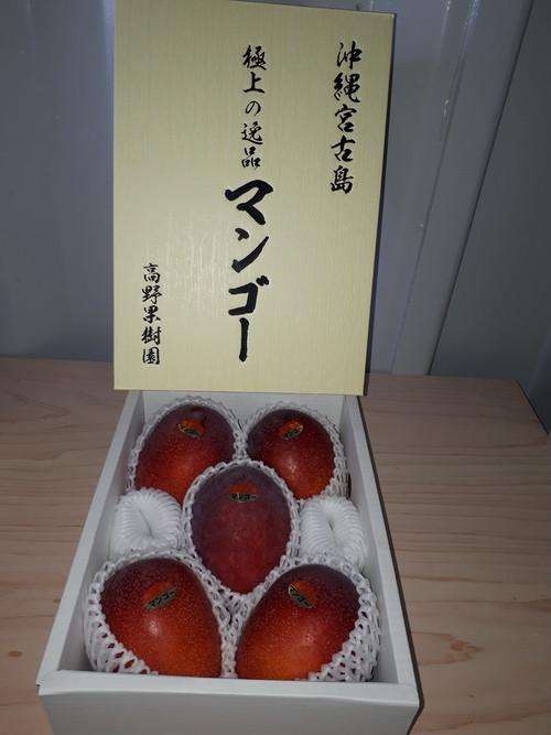 宮古島産 極上の逸品 完熟 アップルマンゴー2kg (4~5玉)18度以上 新鮮 宮古島産マンゴー