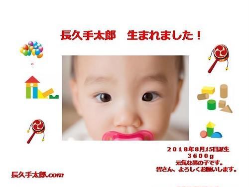 お子様誕生A ホームページ+ドメイン