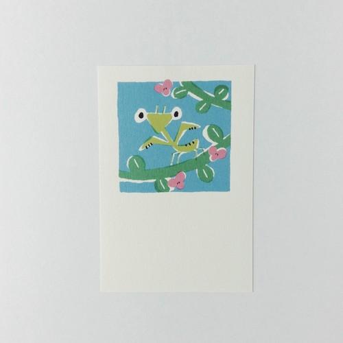 ポストカード カマキリ