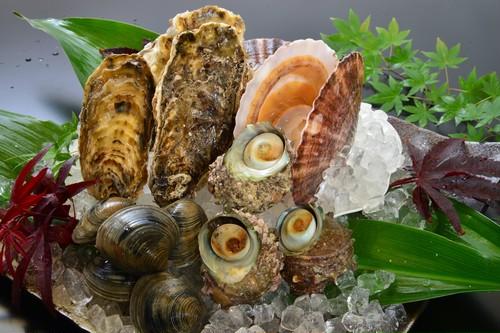 浜焼セット(ホタテ、牡蠣、サザエ、ホンビノス貝)