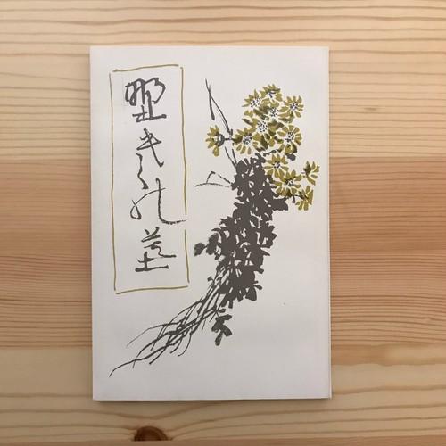 野菊の墓(名著復刻全集) / 伊藤左千夫(著)中村不折(画)