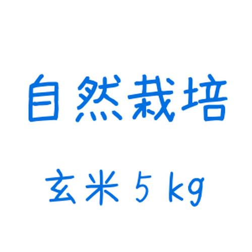 雪どけ米(自然栽培)玄米 5kg