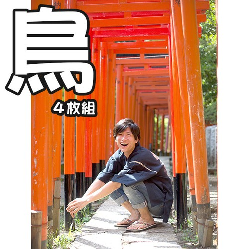 【有馬芳彦】ブロマイド②【鳥】セット(4種入り)