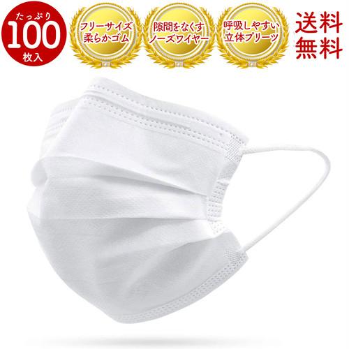送料無料【在庫あり即日発送】不織布マスク[1DAY MASK] 100枚セット レギュラーサイズ