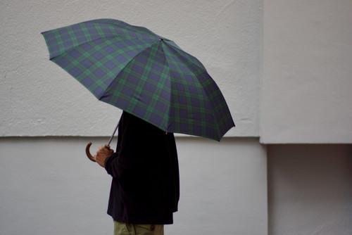 FOX UMBRELLAS / Telescopic Umbrella (Maple)