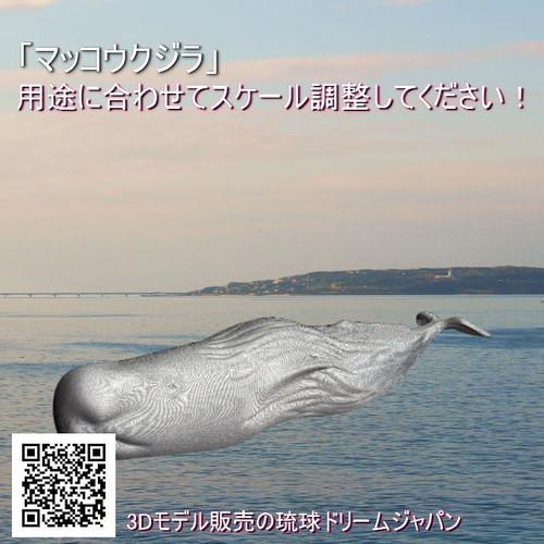 「マッコウクジラ」3Dプリント用データ