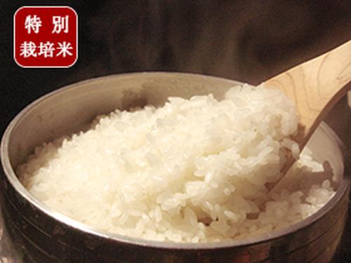 【数%】極上米 やわらか目 食感 9割減農薬・無化学肥料栽培米 ひとめぼれ  ★お届けは約2週間後ごろ