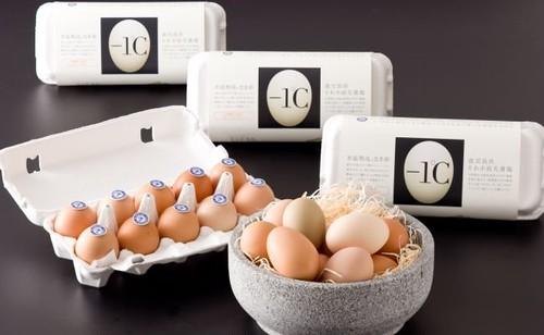 氷温熟成なま卵『-1℃』(マイナス イチド シー)  10玉/1パック【クール便】