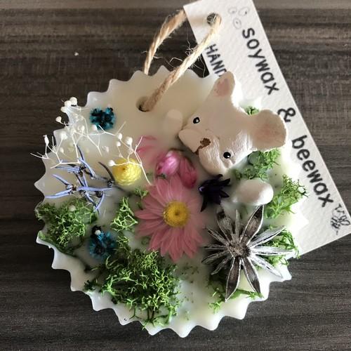 ワックスバーまんまる花(クリーム)①