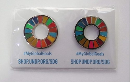 【2個】SDGsピンバッジ