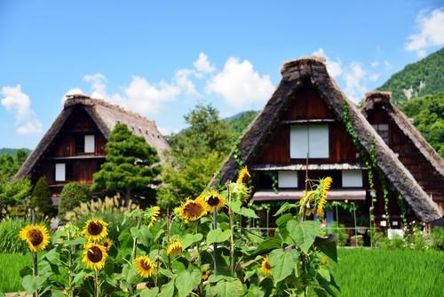 For child(4-11) World Heritage Shirakawa-go and Takayama, Gold leaf experience *with Lunch