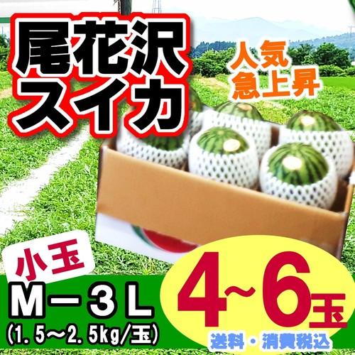 尾花沢スイカ(小玉 4-6玉入り)