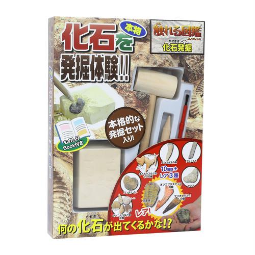 【触れる図鑑】化石発掘