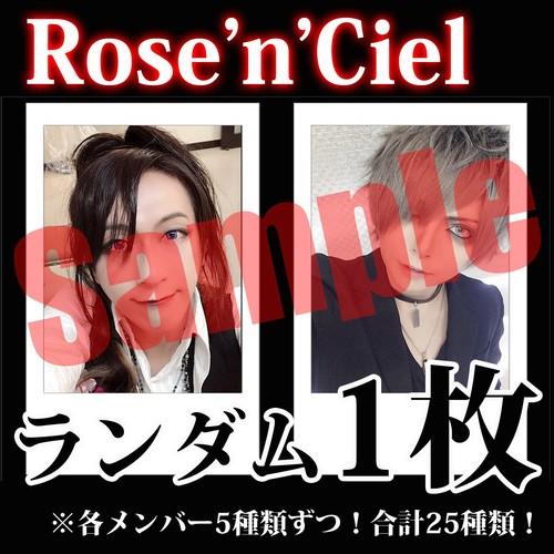 【チェキ・ランダム1枚】Rose'n'Ciel