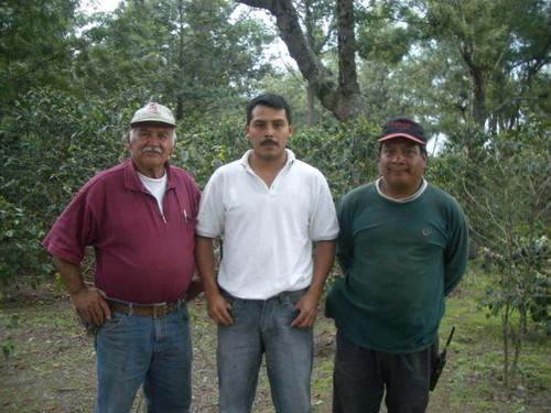 グアテマラ アンティグア レタナ農園