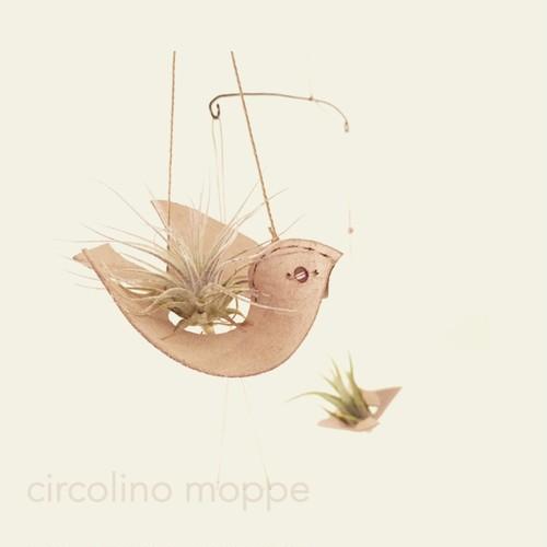 小鳥のエアプランツホルダー