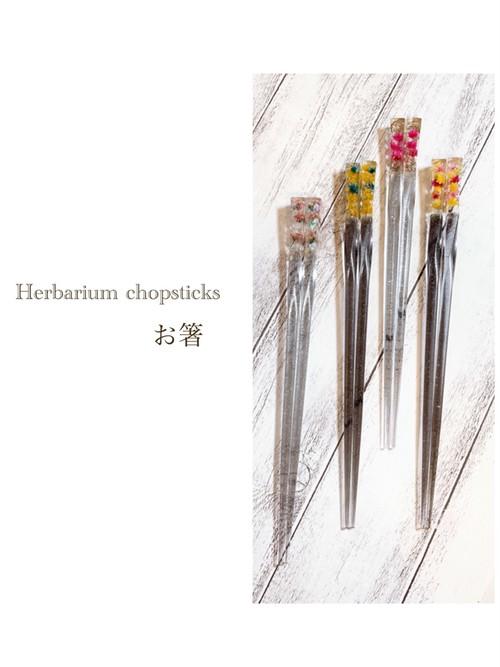Herbarium chopsticks 〜お箸〜認定通信講座