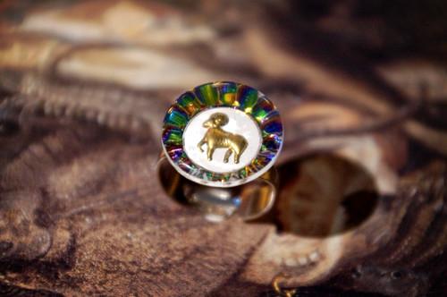 「FRANCE vintage」♈ motief ring