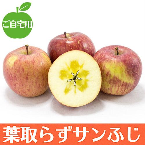 【ご自宅用】葉取らずサンふじ 3kg   りんごの王様がさらに美味しく