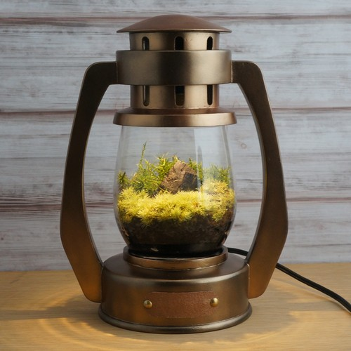 Terrarium Lantern [Antique Copper]