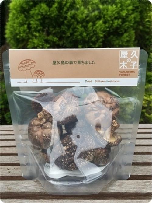 屋久島 森の原木椎茸
