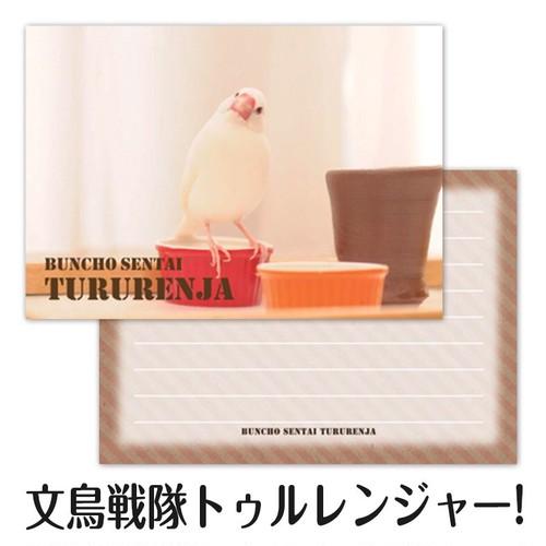 文鳥戦隊トゥルレンジャー! メモ帳