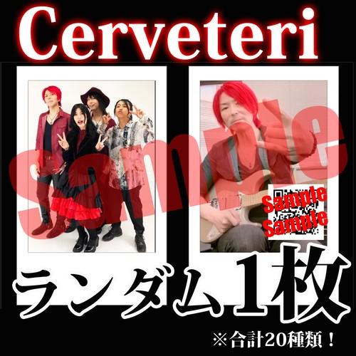 【チェキ・ランダム1枚】Cerveteri