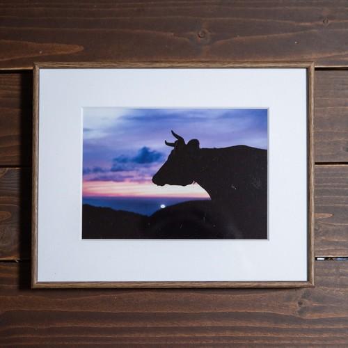 Photo Frame A2(牛)