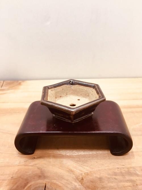 六角形 豆盆栽鉢 sold out