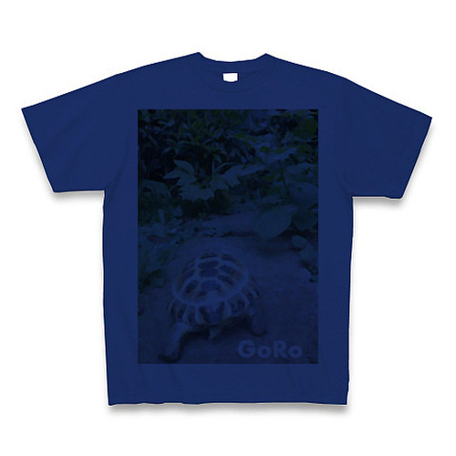 GORO-Tの青
