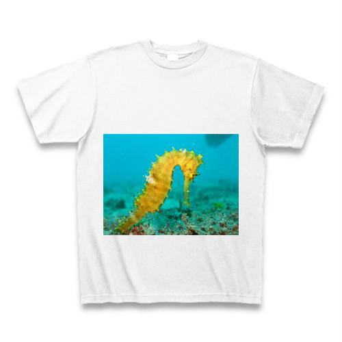 タツノオトシゴTシャツ