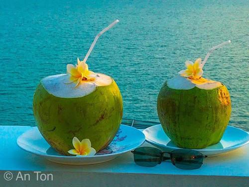 ベトナムココナッツ 1個・Young Coconut