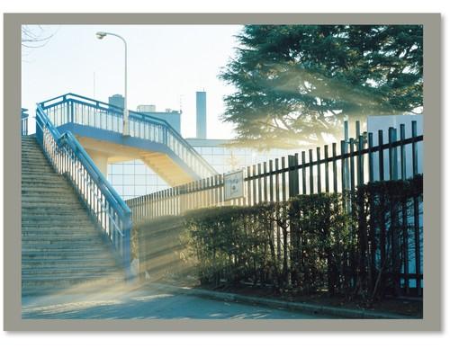 "Yuji Hamada ""photograph"" Type D"