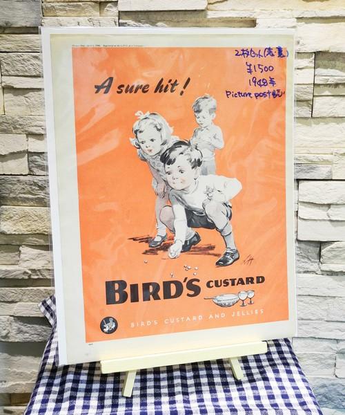 【Vintage品】雑誌切り抜き広告 2枚セット BIRD'S CUSTARD 1948年 イギリス Picure Post誌 /0234z