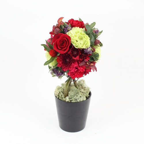 seasonal topiary Arrangement (red)