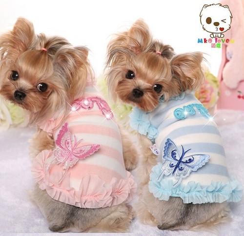 【アウトレット】★かわいい犬服ワンピ/ドレス  バタフライトップス