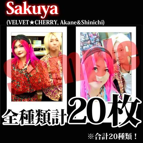 【チェキ・全種類計20枚】Sakuya(VELVET★CHERRY, Akane&Shinichi)