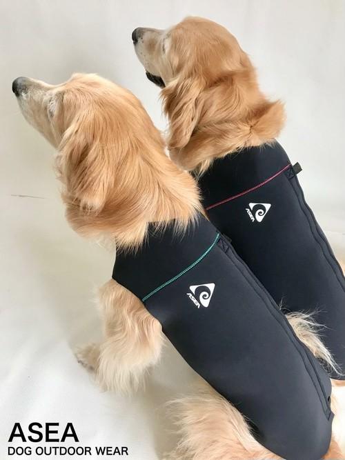 ドッグウェットスーツ 中型犬用 6号サイズ