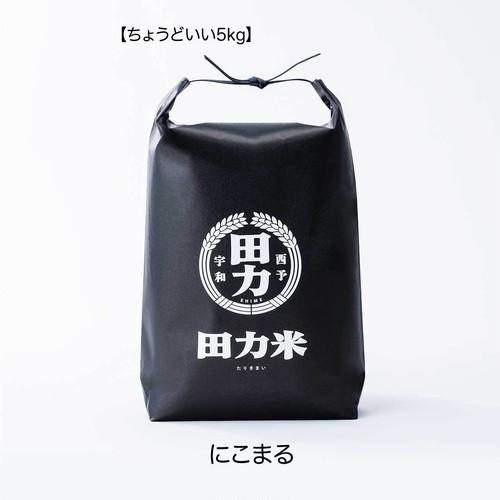 田力米 にこまる 白米 5kg