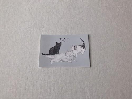 mayumi taniguchi ねこ Fu
