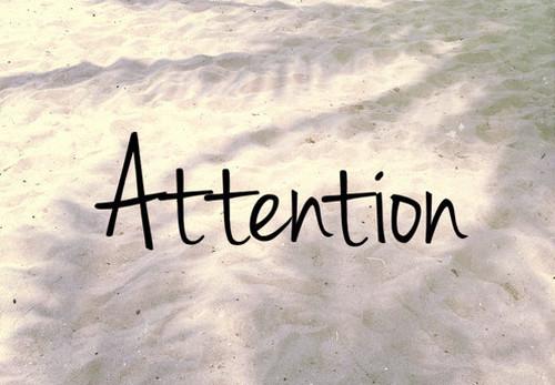 Attention ※リピーター様も毎回必ずお読みください。