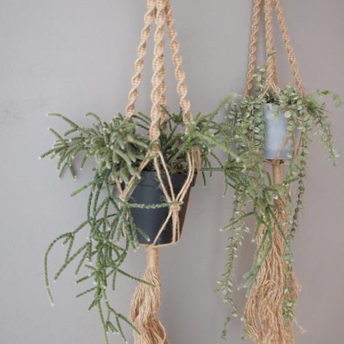 [吊るす植物]リプサリス + マクラメハンギングプランター(平編みに変わりました!)