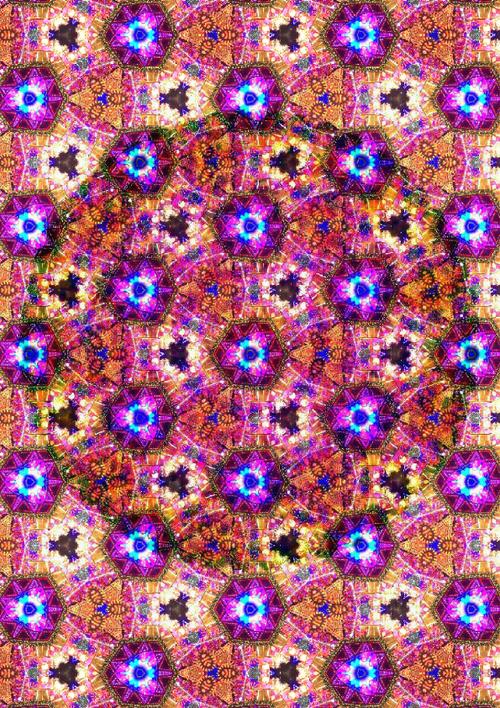 多次元的世界曼荼羅(A4サイズ)