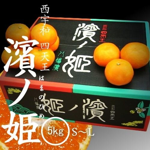 【予約】八幡浜共選「濱ノ姫」 5kg S / M / Lサイズ 特秀品(はまのひめ)