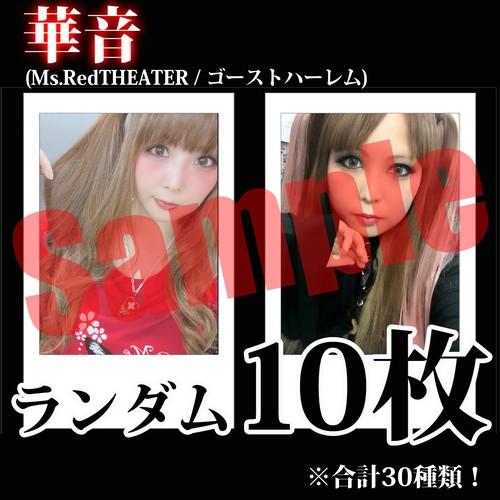 【チェキ・ランダム10枚】華音(Ms.RedTHEATER / ゴーストハーレム)